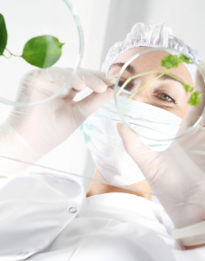 Recherche laboratoires Phytogénèse